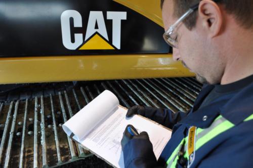 2011-11-Cat-DSC_0985