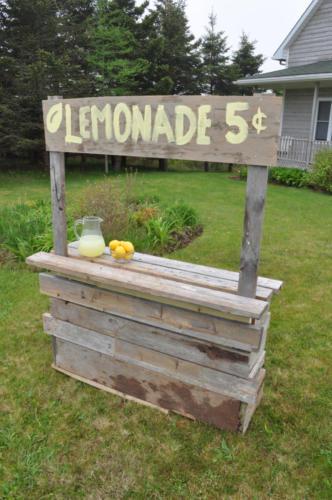 2012-05-Lemonade-DSC_2218