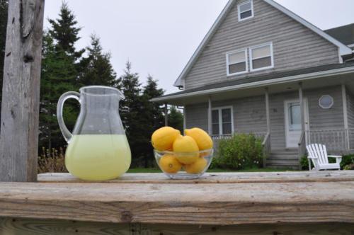 2012-05-Lemonade-DSC_2219