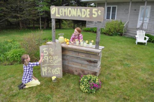 2012-05-Lemonade-DSC_2226