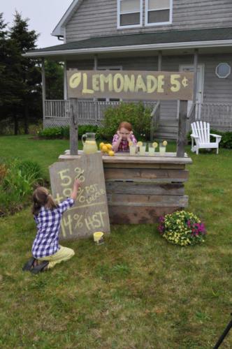 2012-05-Lemonade-DSC_2228